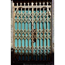 Teal Doors and Gate