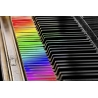 Piano Keys Rainbow Selective Color