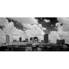 Fort Worth Infrared Skyline