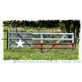 Texas Flag Gate