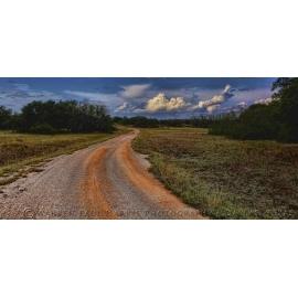 Texas Landscape 4