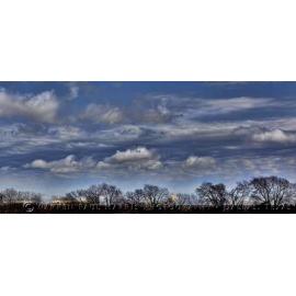 Texas Landscape 6