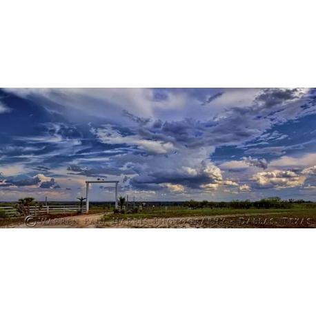 Texas Landscape 7