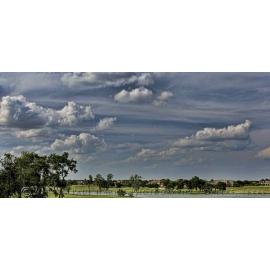 Texas Landscape 11