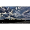 Texas Landscape 12