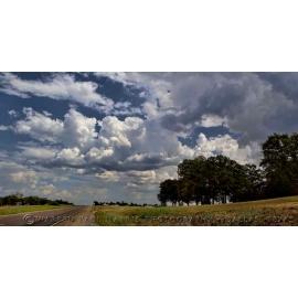 Texas Landscape 14
