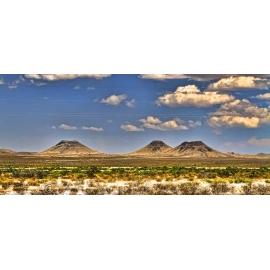 Texas Landscape 16