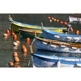 Cinque Terre Boats 1