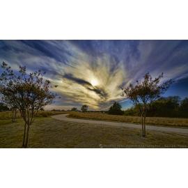 GCGC Amazing Sky Trees