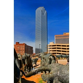 Dallas Skyscraper Longhorns
