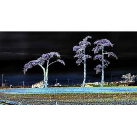 Alien Treescape Violet
