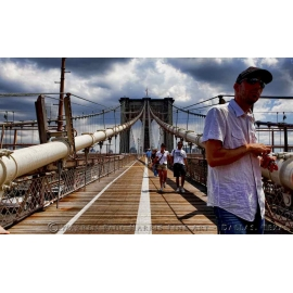 Brooklyn Bridge Native - NYC