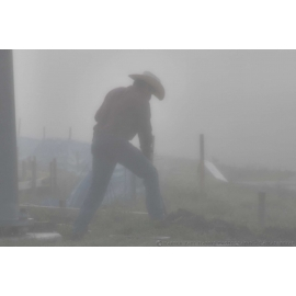 Fog Shrouded Cowboy