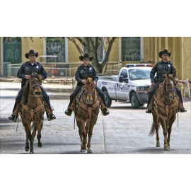 Texas Mounted Police