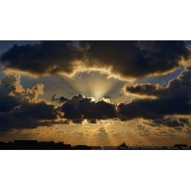 Galveston Sunrise Pelicans